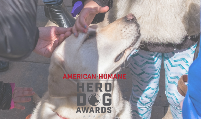 Guide Dog Frances & 2018 American Humane Hero Dog Award